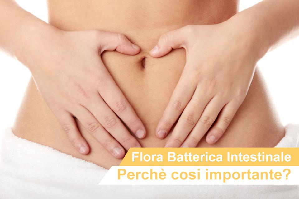 ARTICOLO-FLORA-BATTERICA-INTESTINALE-960X640.jpg